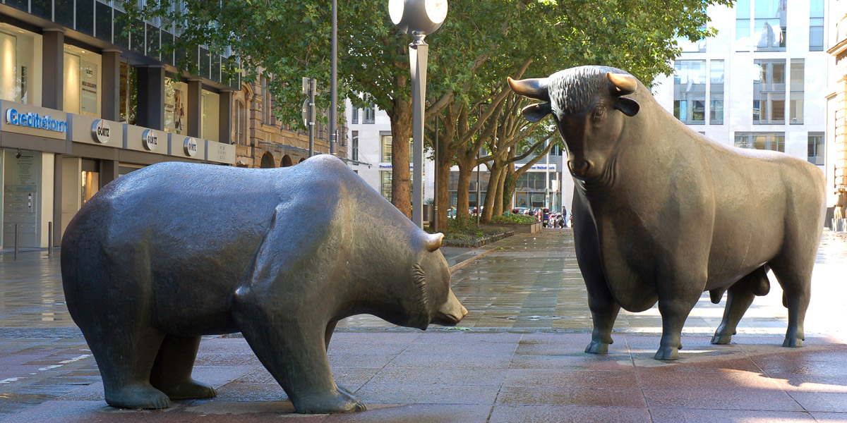 Photo of The Bear And Bull